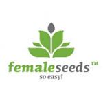 Female seeds company Auto Haze female Seeds