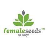 Female seeds company Auto Haze female Seeds