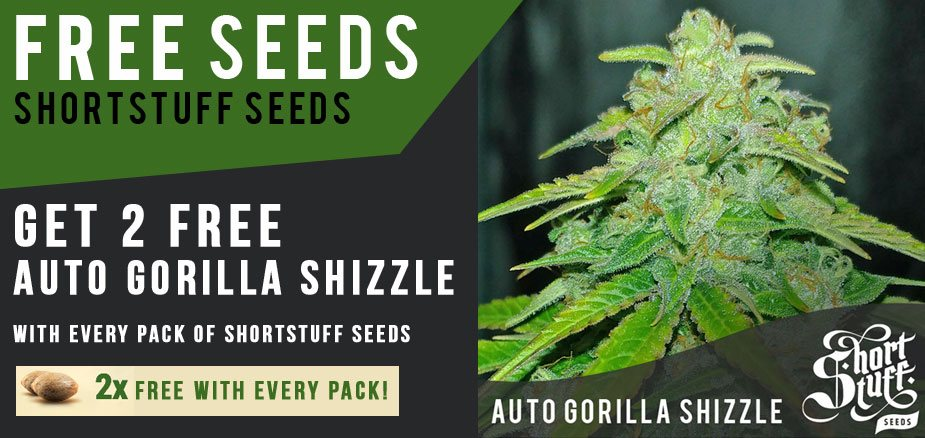 free shortstuff seeds